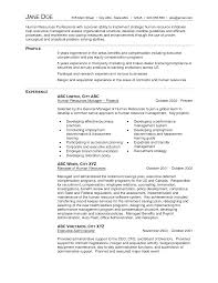 Awesome Collection Of Resume For Senior Accountant In India Resume