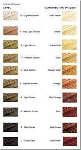 Hair Color Filler Chart Can I Use Garnier 7 0 Dark Blonde On My Bleached Orange Hair