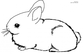 realistic rabbit coloring pages. Delighful Realistic Download Free Printable Clipart And Coloring Pages In Realistic Rabbit