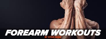 forearm size how to structure forearm workouts for size and grip