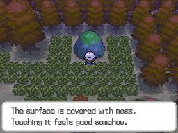 Pokemon Black And White Evolution Guide