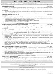 Sales Rep Sample Resume Outside Sales Resume Template Sales Representative Resume Sample 41