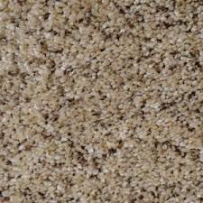 home decorators collection carpet sample madison ii color