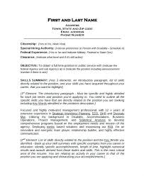 example of a work resume example work skills resume examples of for a information