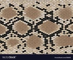 Snake Skin Pattern Fascinating Snake Skin Pattern Royalty Free Vector Image VectorStock