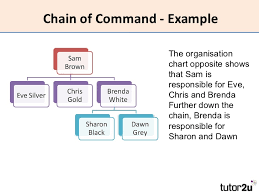 Short Chain Of Command Essay Sample