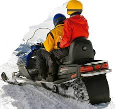 the next pandemic toy snowmobiles nh
