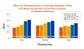 Adjust Seeding Rates For Delayed Soybean Planting Golden