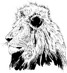 Small Picture Lion Head Photos Coloring Coloring Pages