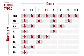 Who Can Donate Blood To Whom Chart Bdd Donate Blood Save Life