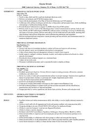 Support Principal Resume Samples Velvet Jobs
