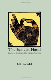 the issue at hand essays on buddhist mindfulness practice by gil  3057677