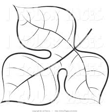 Small Picture coloring book of leaves Vector Coloring Page of a Black and