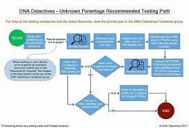 Dna Detectives Autosomal Chart Pin On Genealogy