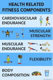 Health Related Components Of Fitness Poster For Pe Class 9 Color Variations