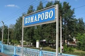 ГУПДО «Пригородное» заплатило за ремонт аллеи-призрака более 2,5 млн рублей