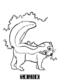 Small Picture S is for Skunk Coloring Page Color Luna