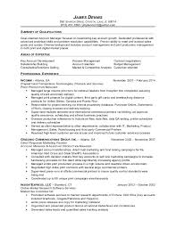 Account Manager Sales Resume Account Manager Resume Free Letter