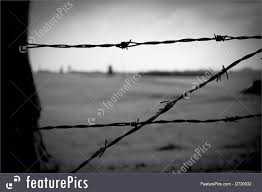 barbed wire fence concentration camp. Documentary: Barbed Wire Fence In Concentration Camp Majdanek Poland R