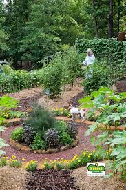 Small Picture 37 best Garden Plans Inspiration images on Pinterest Gardening