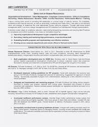 Commercial Letter Of Intent Template Examples Letter Template