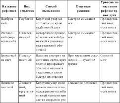 Рефераты по медицине и здоровью com Банк рефератов  Виды геморрагических инсультов