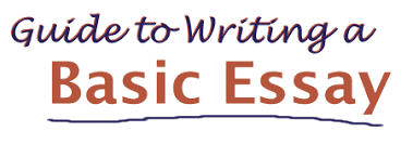 basic guide to essay writing guide to writing a basic essay
