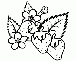 Small Picture Fresh Strawberry Coloring Page 85 For Your Coloring Books with