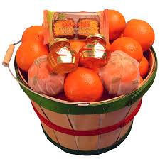 florida honeybells in basket