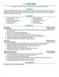 Resume Example Best Two Page Resume Example Free Samples Two Page