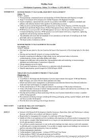 Product Management Manager Resume Samples Velvet Jobs