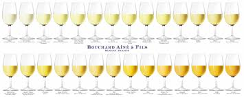 White Wine Chart Sweet To Dry Wine Color Complete Visual Guide Social Vignerons
