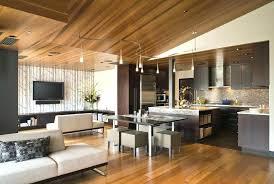 contemporary track lighting living room contemporary. Contemporary Track Lighting Pendant Living Room With Ceiling E