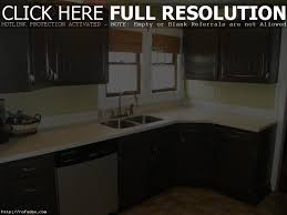 Small Picture Exellent Building Your Own Kitchen Cabinets Full Image Simple Diy