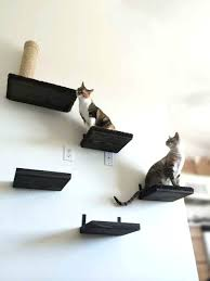 cat shelves cat shelf cat shelves