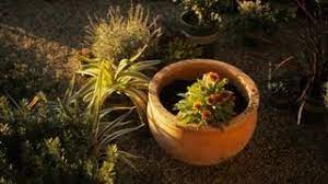 Inexpensive Small Scale Landscaping Flower Garden Ideas Professional Gardening Tips Youtube