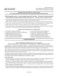 It Director Resume Examples Executive Resume Examples Fair Executive Cv Examples The Cv Store 2