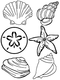 Small Picture Seashell Coloring Pages GetColoringPagescom
