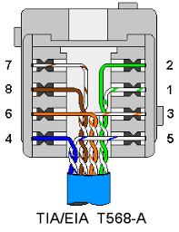 network jack wiring diagram network image wiring terminating wall plates wiring on network jack wiring diagram