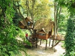 Rabeang Pasak Tree House Chiang Mai  Picture Of Blue Elephant Treehouse In Thailand
