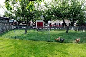 en wire garden fences vegetable garden fence en wire photo build en wire fence vegetable garden
