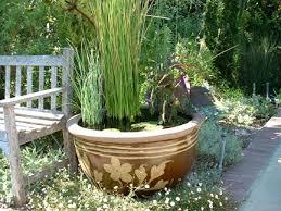 container water garden. Fine Garden Containerwatergarden Intended Container Water Garden