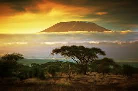Afrikanische Weisheiten Und Sprüche