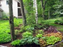 Small Picture astounding woodland garden ideas design ideas woodland garden path
