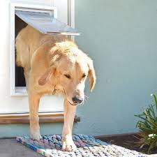 patio pacific pet door endura flap pet door for doors dog doors