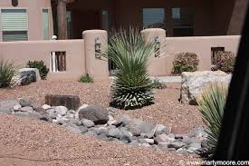 landscaping idea sotols and other desert plants