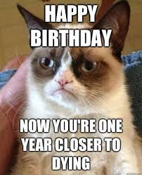 grumpy cat i had a birthday once. Delighful Cat Top 10 Grumpy Cat Memes Hahahah Grumpy And I See Eye To Eye  Actually Say Something Just Like This Every Year On My Birthday With Cat Had A Birthday Once