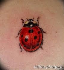 фото идея тату божья коровка 22122018 122 Photo Ladybug Tattool