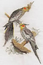 Cockatiel Chart Cockatiels Counted Cross Stitch Kit Or Chart 14s Aida