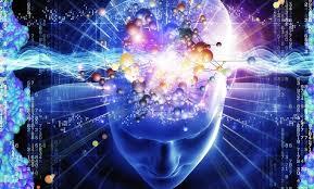 beyin gelişimi ile ilgili görsel sonucu